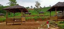 Miliki Kavling Murah Nuansa Alam Transyogi Lokasi Bogor