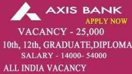 Job opening driver, security guard, in axis bank job