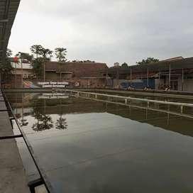 Sewa Harian / Event Kolam Pemancingan Balong Wika