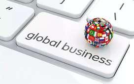 Global business development project