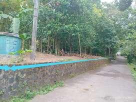 Kode : TP 1477 #Tanah Pekarangan Prospektif Murah di Pakem Sleman