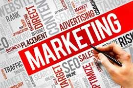 Marketing Manager Female