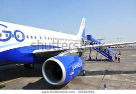 INDIGO AIRLINES All India Vacancy opened - Make your career in Domesti