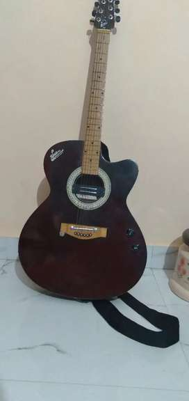 SIGNATURE GUITAR NEW!!
