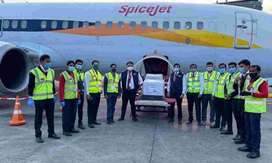Job opening in Airlines Company