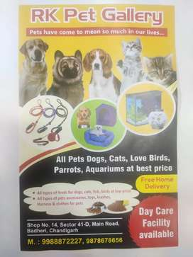 Pet foods and accessories