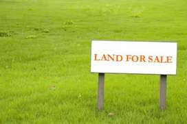 120 kanal land for sale