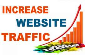 Web traffic ..traffic for your site