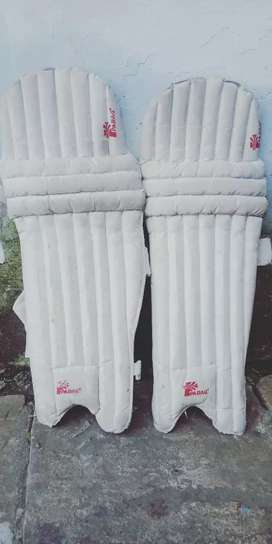 cricket pads for men