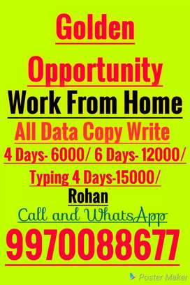 Copy paste typing Work our manual Hand Writing paper work
