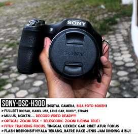 KAMERA SONY DSC H300 TERAWAT