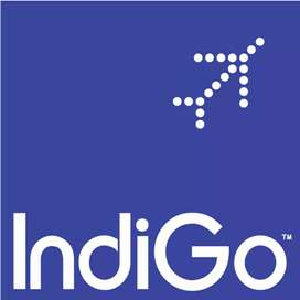 INDIGO AIRLINES JOB OFFER FOR MALE AND FEMALE CANDIDATES.