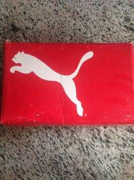 Puma casual shoe
