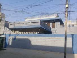 Ground floor 600 square yard for rent.