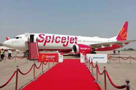 Spice jet hiring candidate for jobs