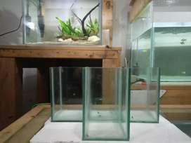 Soliter/aquarium ikan cupang 10x10x15