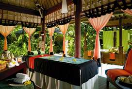 opening job for healthy traditional spa service