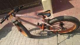 Fat Bike Appgrow 26x4