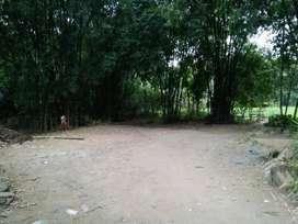 Jual tanah bambu
