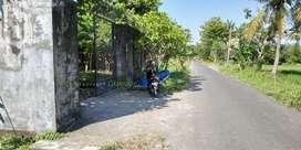 Tanah SHMP Ex Usaha Kebun Buah,Ikan & Unggas di Utara Perum Laguna SBL