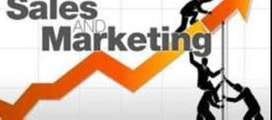 Job Opening For Sales & Marketing - Limited Vacancy Available