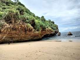 Tanah murah pinggir pantai gunungkidul