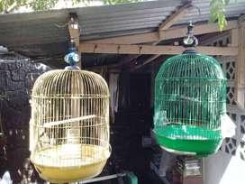 Dijual Kurungan Burung, 2 Unit