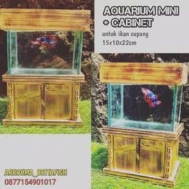Aquarium mini dan kabinet soleiter ilan cupang