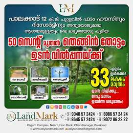 Coconut Farm for sale in Palakkad