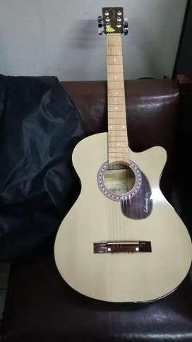 Gitar lakewood akustik
