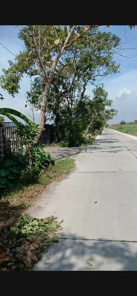 Jual tanah plot industri Mojokerto Jawa timur dekat toll