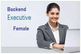 Back end cum Customer Relationship Executive