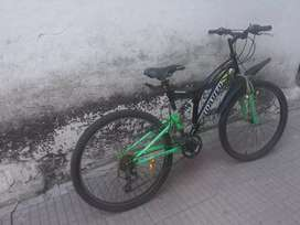 21 Geared Cycle