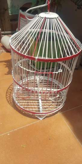 Antique style bird cage