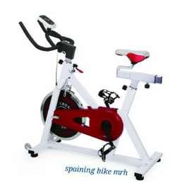 Comercial spinning bike