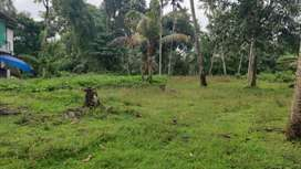 Residential plot of 40 cents in Anthikad, Thrissur