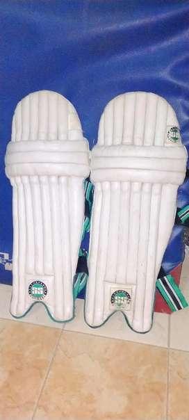 Cricket ss ped 2 L gaad free