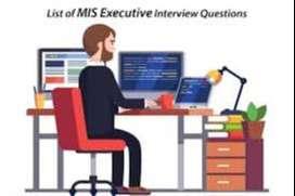 Compaign Executive - MIS