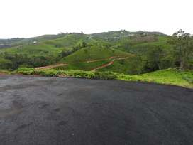 3 Acre Approved plot for Sale at Dottabetta Kenthorai Ooty