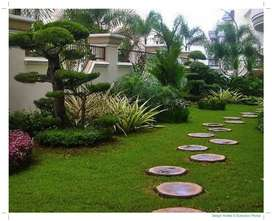 Cari Jasa Taman, Vertical Garden, Minimalis, Tematik AMBON?! Berpengal