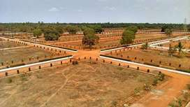 Purchase Plots in Developing Area