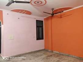 Dream Floor at reasonable price