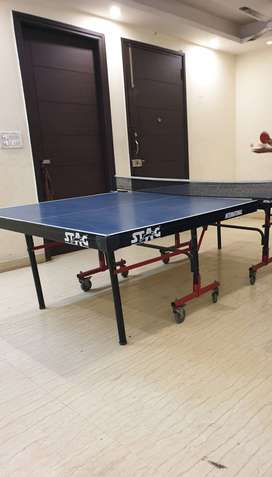 Stag Table Tennis (with net)