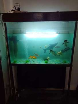 Aquarium with stand