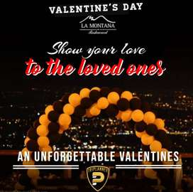 Celebrate Your Valentine Day with TriPlanner
