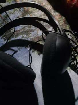 Phillips headphone