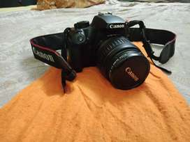 Sell for Canon 1000D SLR