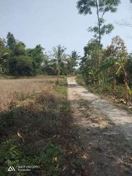Jual Murah Tanah Luas 8491m2 Akses Mobil Di Wanasari Purwakarta #ad