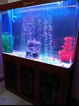 Xailong Aquarium