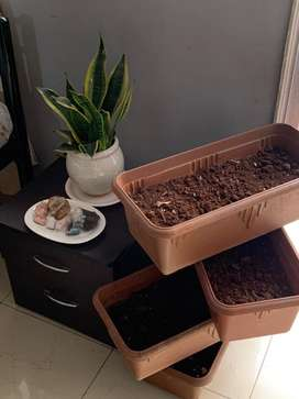 4 plastic pots with trays